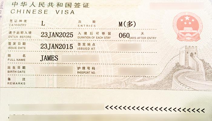 china business visa application form download
