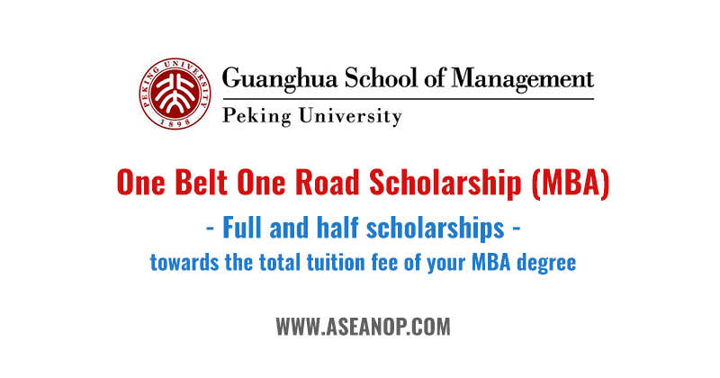 chinese government scholarship online application 2017
