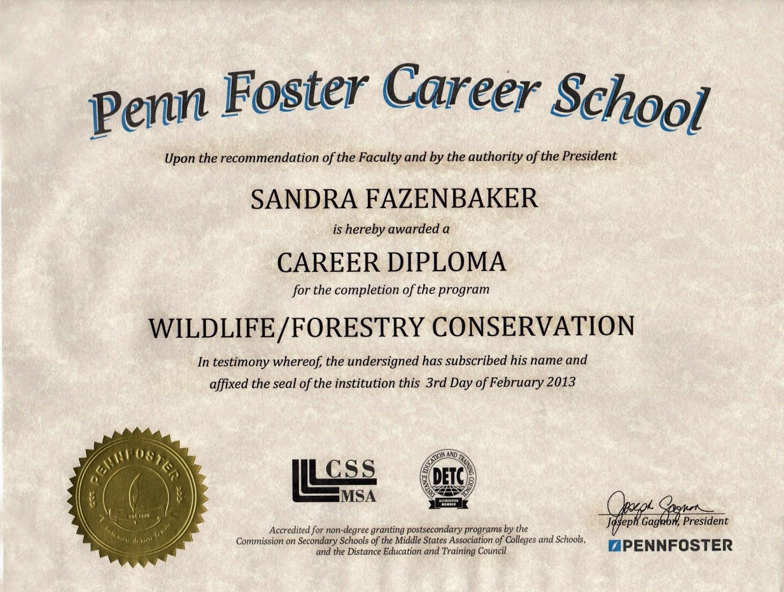 degree or diploma on job application