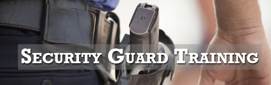 online application for security guard license