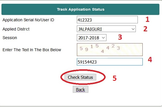 how to check cic application status