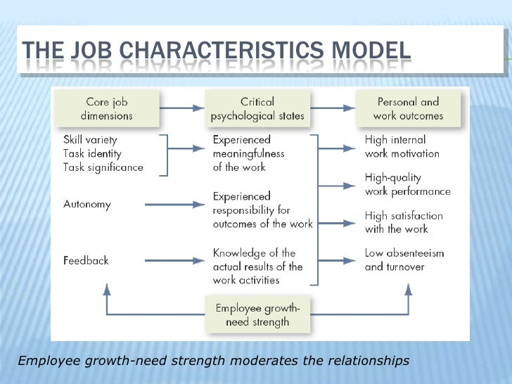 application the job characteristics model