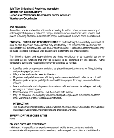 junior application developer job description