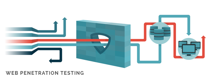 what is web application penetration testing