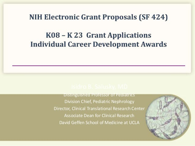 write an application to principal for grant of scholarship