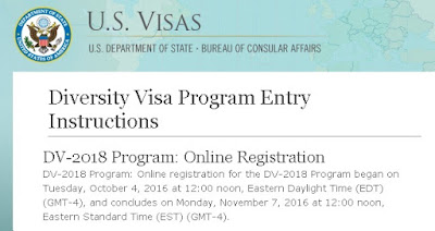electronic diversity visa lottery application form