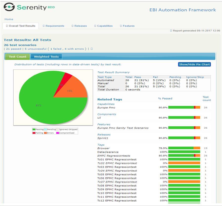 web application testing report sample